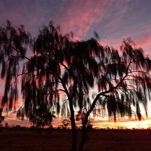 Sunset near Boulia