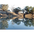 The Darling River upstream of Bourke - not tellin' how to find this place
